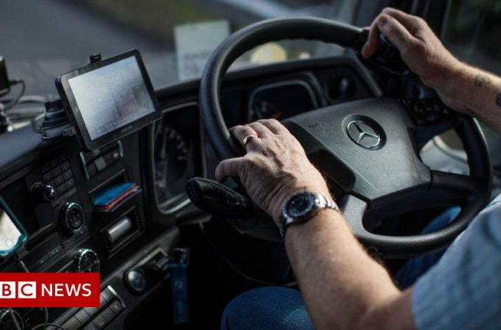 Hire UK workers to drive lorries, minister tells firms